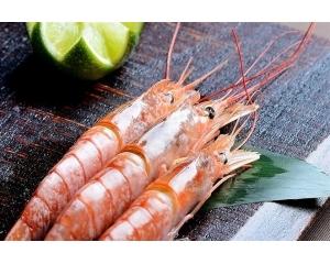 推荐6家入住台湾五星酒店吃高端海鲜价格实惠吃到饱
