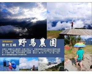新竹五峰野马露营场一年四季看大自然不同美貌