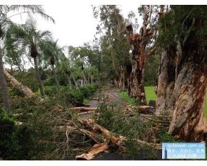 苏迪勒台风走后台湾部分旅游景区被破坏暂停运营