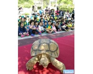 看见动物大树下的Zoo寿山行动动物园保育推广巡
